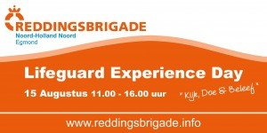Lifeguard Experience day